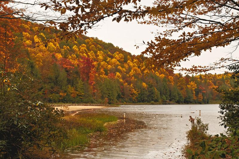 Beartree Lake III