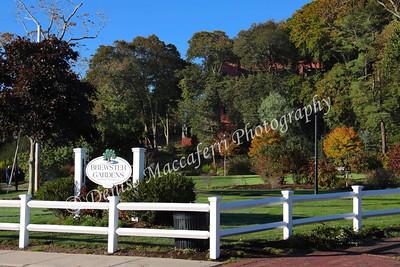 Brewster Garden-imp