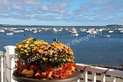 Fall Harbor-imp