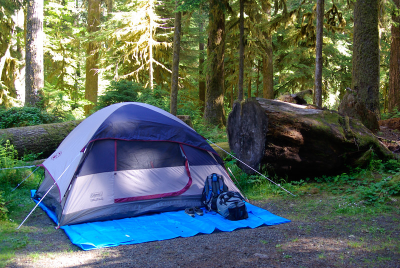 Olympic Camping Trip