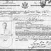 Solomon Nathanson naturalization papers
