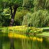 01-06 Large Lake @ Longwood (du Pont) Gardens, PA