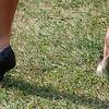 Heels in Grass...