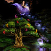 Magic Feather Ride<br /> <br /> Deep in the forest in the middle of a cool stream is an enchanted tree that sprouts magic feathers. The feathers will take you anywhere you want to go!