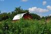 Farm 003