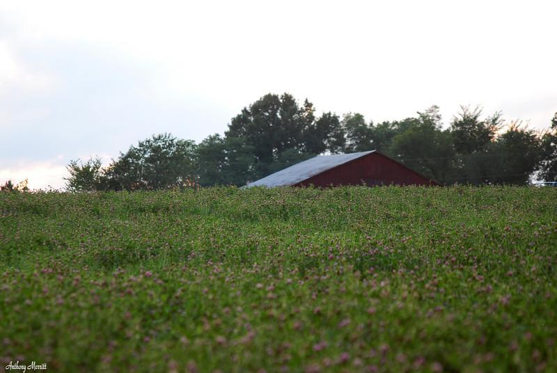 Farm 0014
