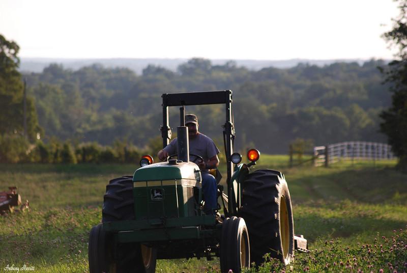 Farm 006