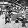 PA Farm Show-05517