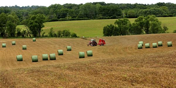 Hay making!