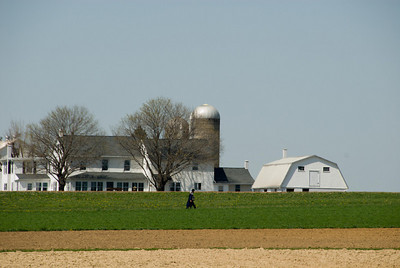 Amish Farm in Lancaster - a walk in the field