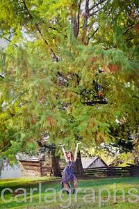alison tiny, tree big-1