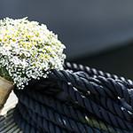 bouquet desktop
