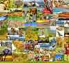 Postcard - South Africa - Austin Adventures - ID - Medium Quality