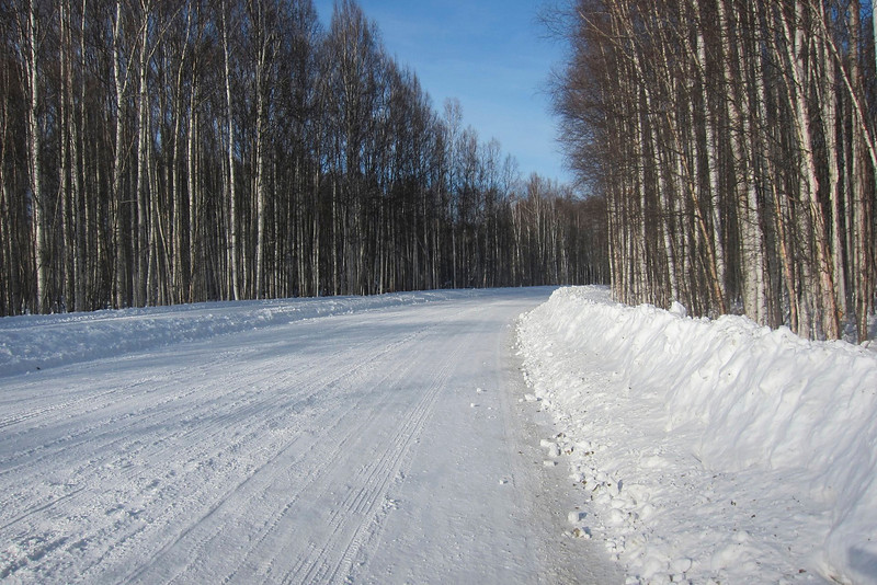 The road to the river trail
