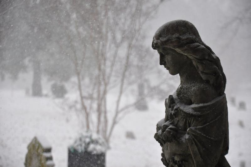 Elmwood Cemetery. February