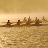 Two teams of four rowing skulls prepare to race on the Saint John River in Fredericton, New Brunswick at dawn in the fog.