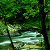 Little Pigeon River between Gatlinburg and Pigeon Forge