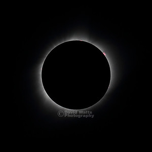 Totality with Prominences