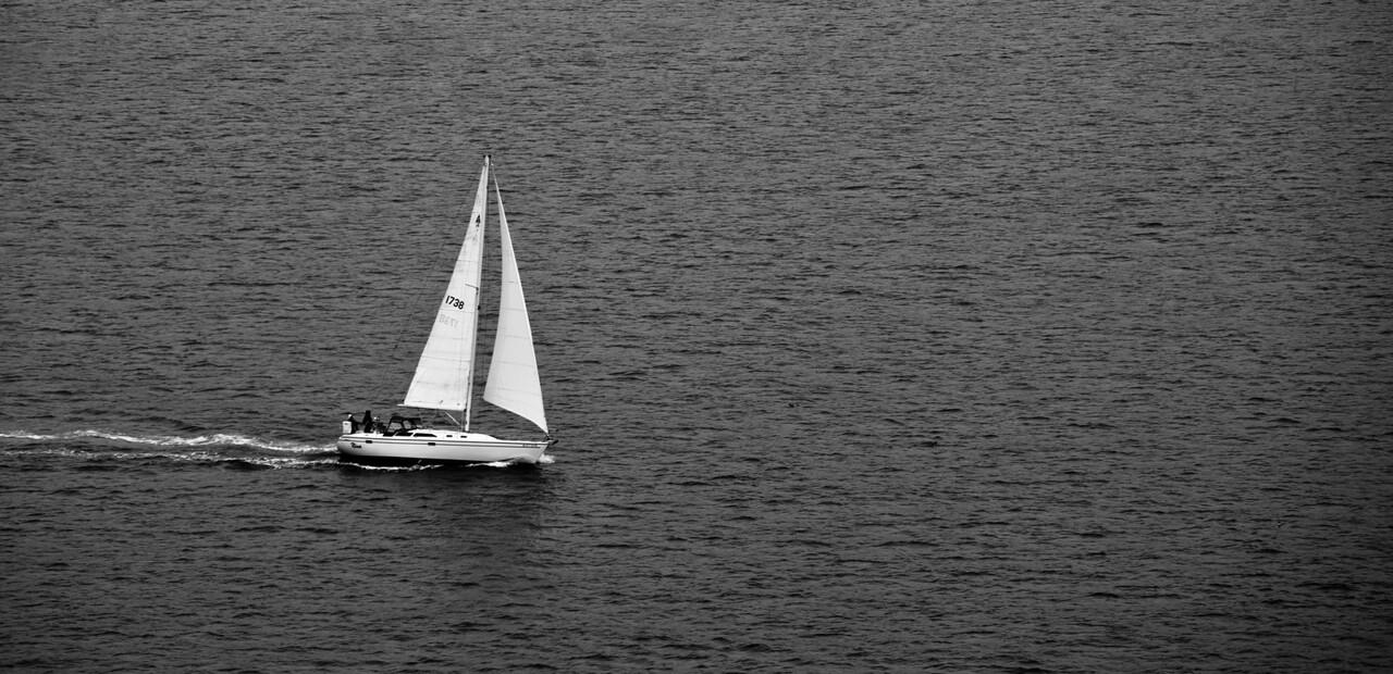 Sailing the Bay