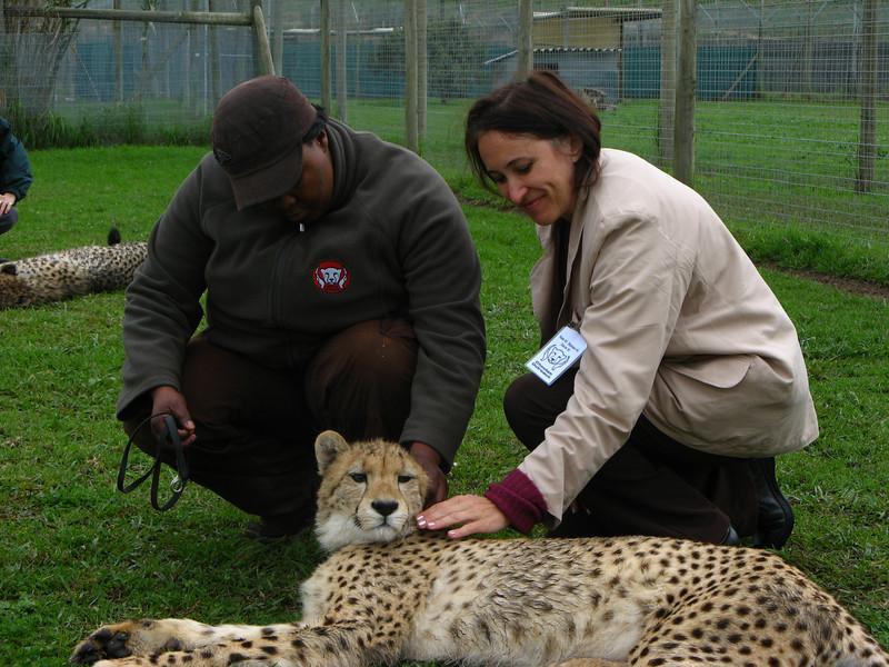 Cissa and Max the Cheetah