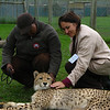 Cissa and Max the Cheetah