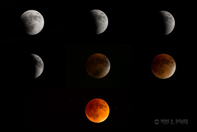 Stages of the 2015 total lunar eclipse