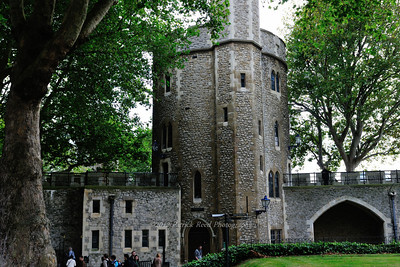 Trees growing around part the Tower of London castle