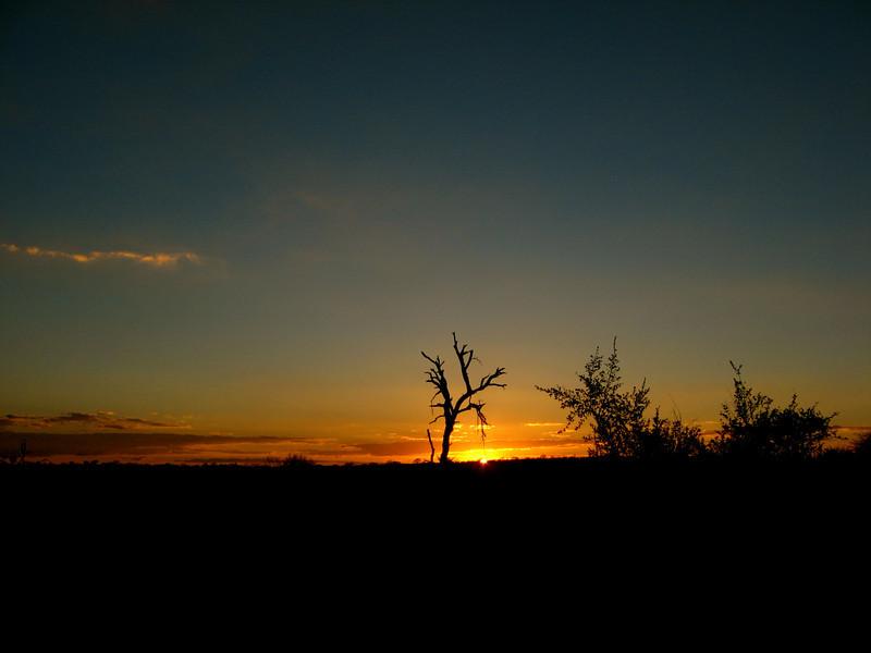 June 20 Sunset at Ngala 2