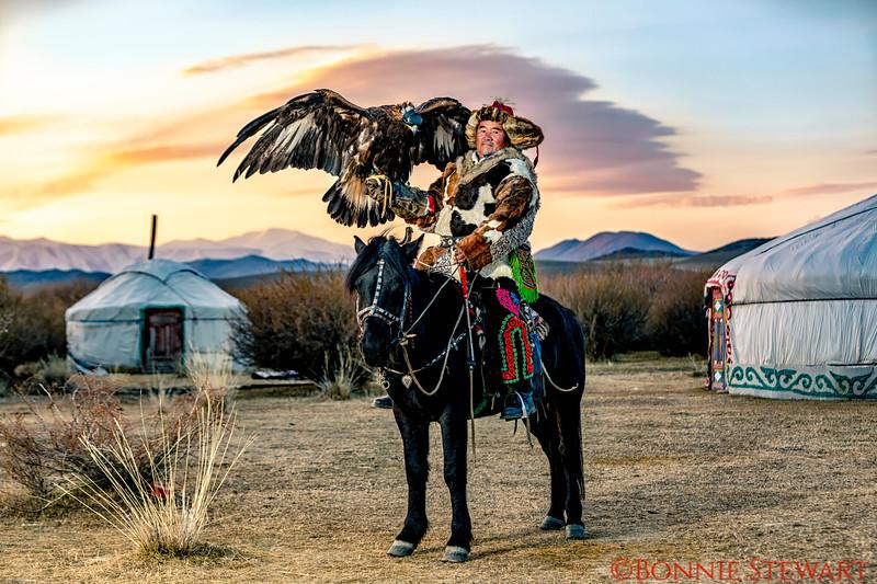 Mr. Sailou, Mongolia Horse, Kazakh Eagle Hunter; Ghers