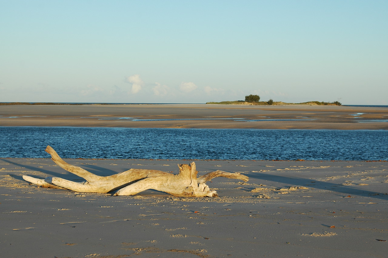 Late afternoon sun at Elliott Heads estuary on the low tide.