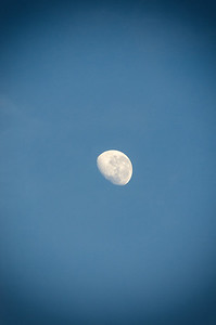 Moon in the Morning 2