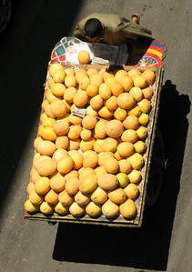 Honeydew melon seller on a Cairo street.
