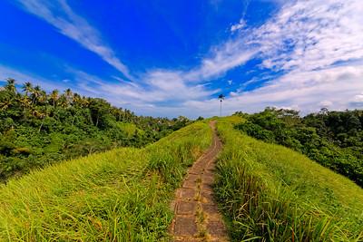 Ubud Ridge Path, Bali, Indonesia