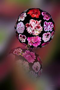 Geranium Sphere