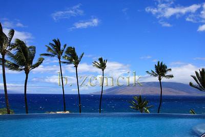 Forever Maui