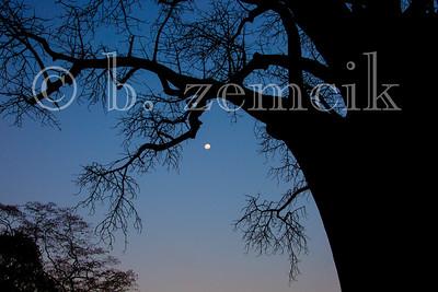 Zambia 06-29-2015-0200