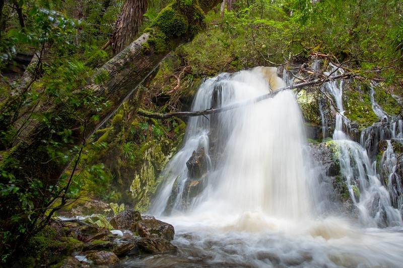 Crater Falls, Cradle Mountain National Park