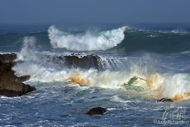 Stirring the Pot ~ Massive North Shore waves at Shark's Cove ~ O'ahu