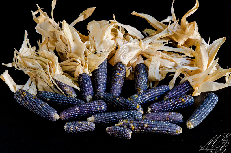 Oranamental Blue Corn