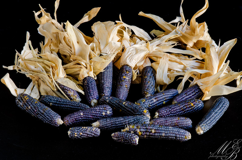 Oranamental Blue Corn