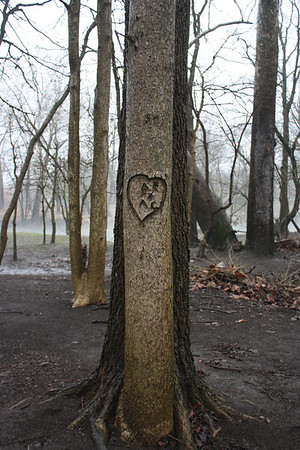 Love from long ago along the White River, January 28, 2013<br /> <br /> Photographer's Name: Rachel  Landers<br /> Photographer's City and State: Anderson, IN
