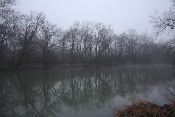 Trees lining the foggy White River, January 28, 2013<br /> <br /> Photographer's Name: Rachel  Landers<br /> Photographer's City and State: Anderson, IN