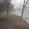 Fog along the White River, January 28, 2013<br /> <br /> Photographer's Name: Rachel  Landers<br /> Photographer's City and State: Anderson, IN