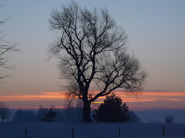 """""""February morning"""" at my farm in Richland Township.<br /> <br /> Photographer's Name: J.R. Rosencrans<br /> Photographer's City and State: Alexandria, Ind."""