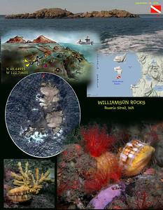 Williamson Rocks, Rosario Strait, WA.  September 28, 2008