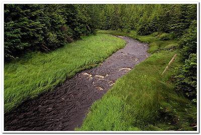 Island Creeks Be Like