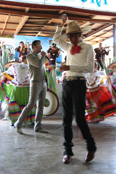 lasso performer and folk dancers and musicians.  the herradura factory, tequila, jalisco.