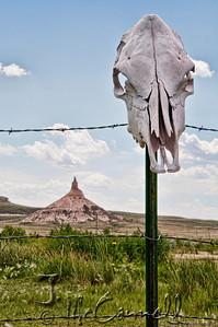 Chimney Rock Skull
