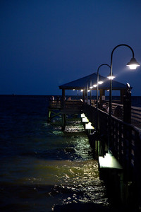 Night Manatees at the Pier