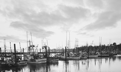 Port of Newport 2